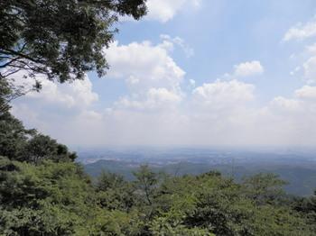 高尾山(金比羅台).jpg