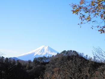 高川山の中腹から.JPG