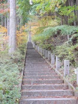 鳥居の階段(403段).jpg