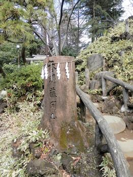 鳩森八幡神社(富士塚1).jpg