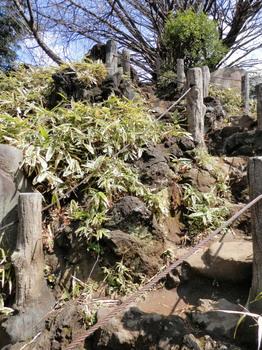 鳩森八幡神社(富士塚登山道2).jpg
