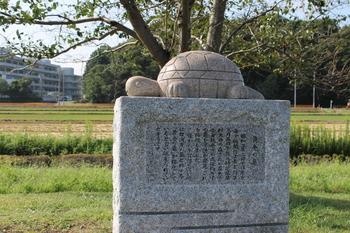 黄金の亀伝説.JPG